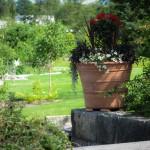 Krukor, urnor, tandoor, terrakottakrukor, trädgårdskrukor