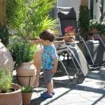 Trädgårdskrukor och urnor