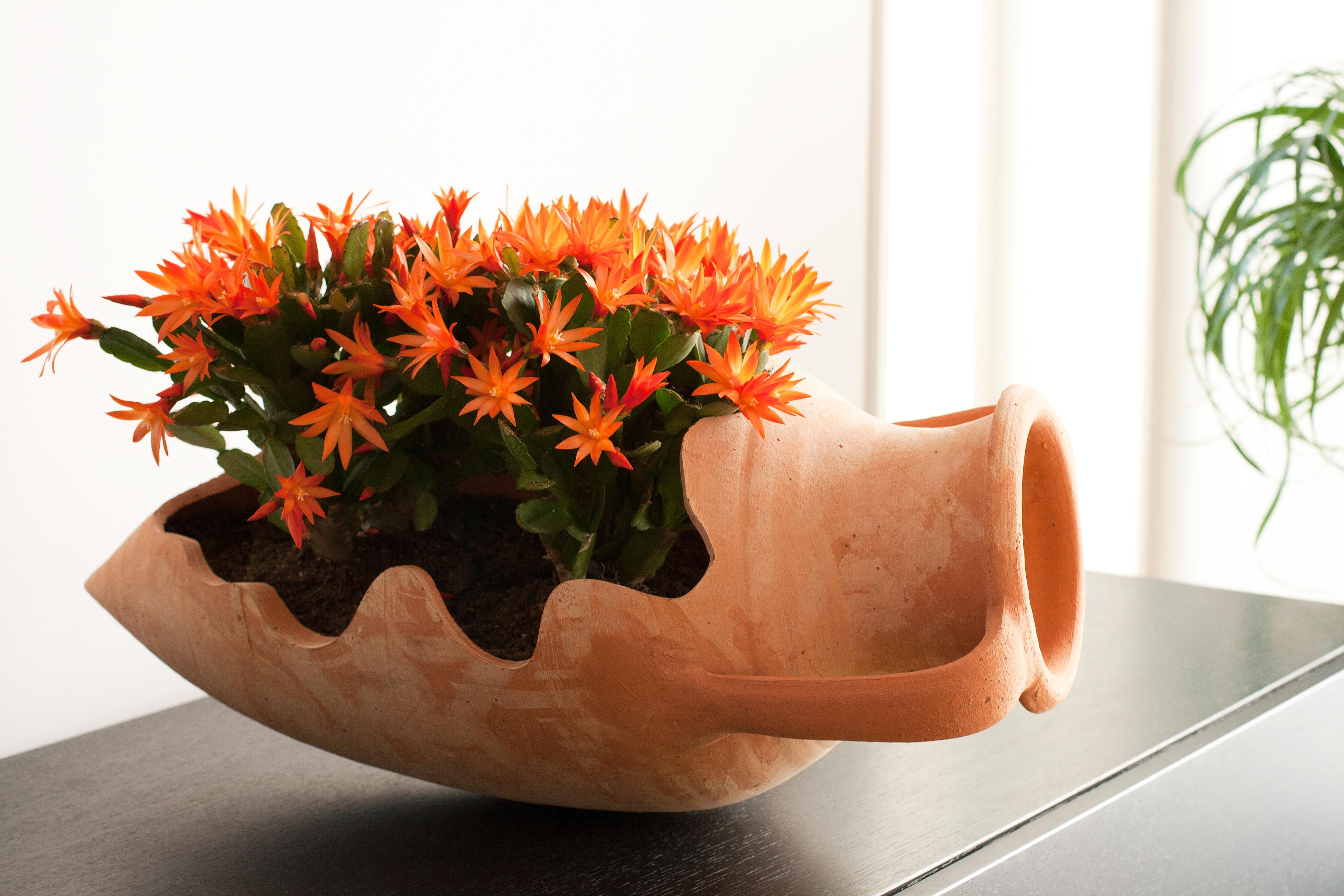 Äkta amfora från Medelhavet. Krukor och urnor av terrakotta. Amfororna är skapta för hand och godset är hårdbränt. Stora krukor och urnor.