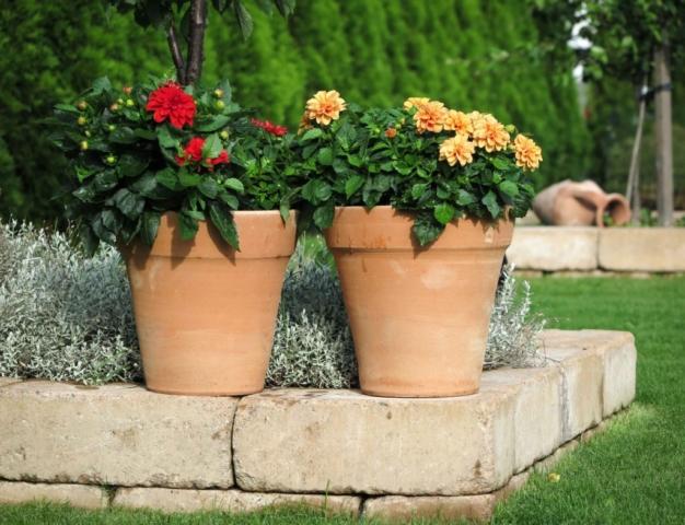 Blomkrukor som kan stå ute på vintern. Frostsäkra krukor för olika slags blommor.