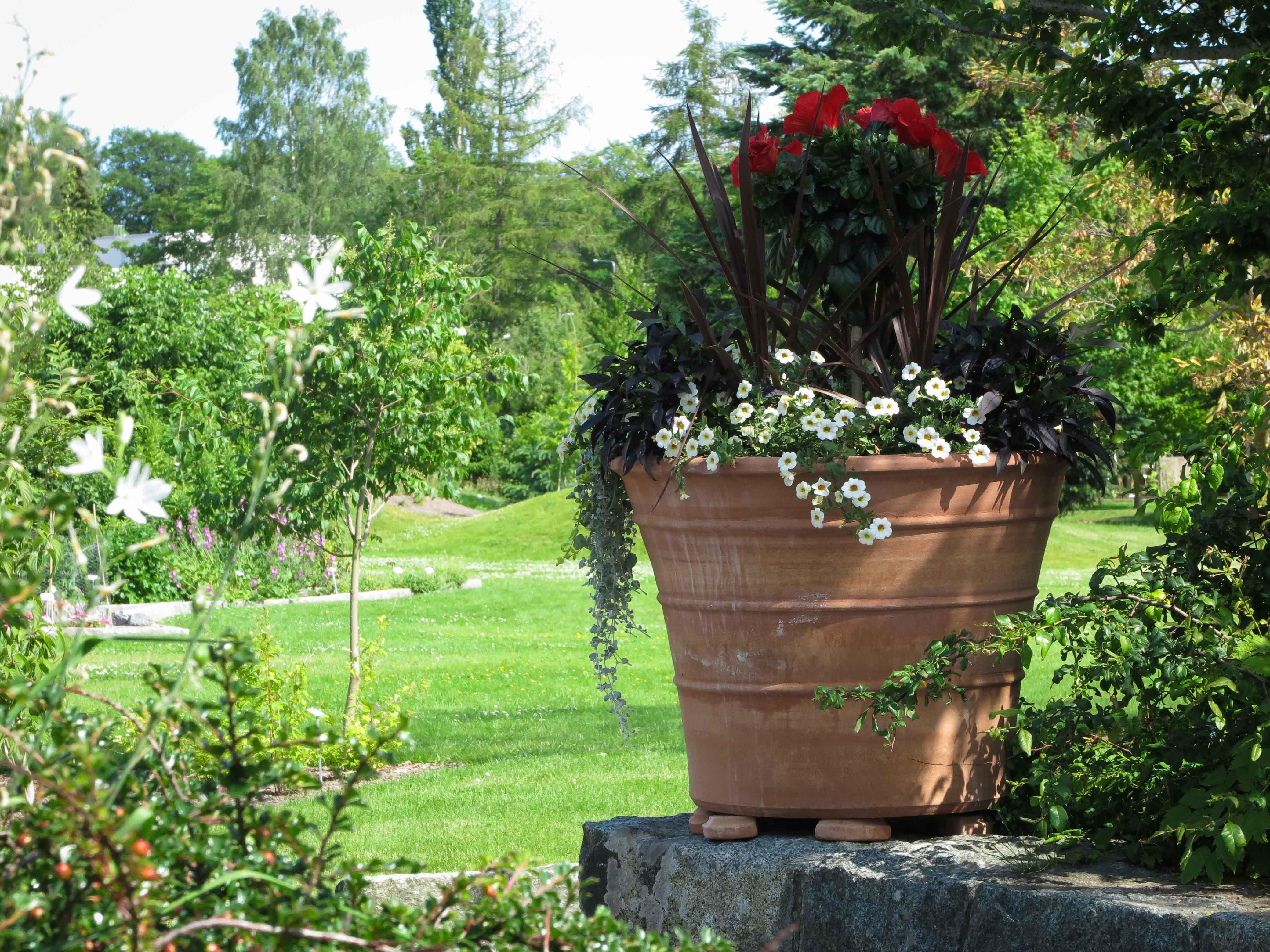 Krukor i botaniska trädgården. Stora trädgårdskrukor. Vintertåliga krukor som skapats för hand.