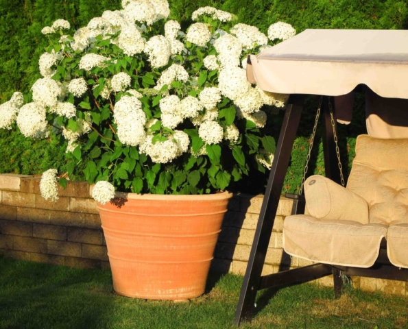 Stor trädgårdskruka av terrakotta. Krukorna är hårdbrända och handgjorda.