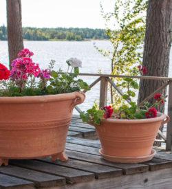 Krukor med fat och kruktassar. Handgjorda krukor från Kreta. Krukorna är frosttåliga och är av allra högsta kvalitet.