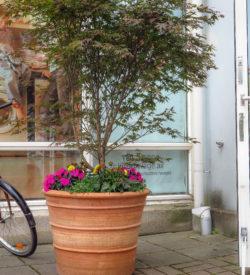 Palamedes 60x80 är en stor kruka som fungerar lika bra för villaträdgårdar som här, i offentliga miljöer.