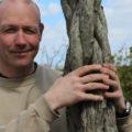 Köldtålig palm för svenskt klimat, bättre än väderkvarnspalm