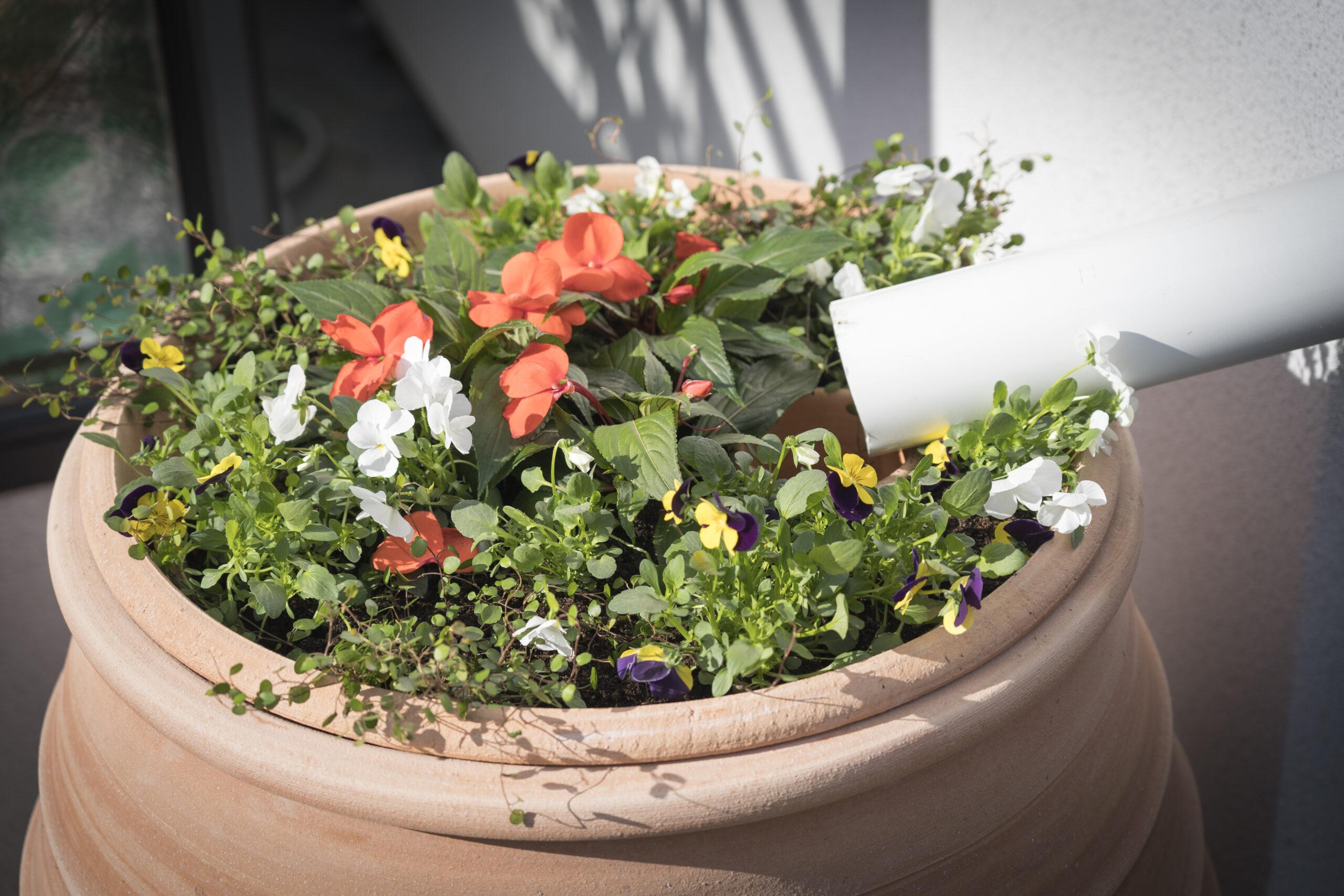 Med blomsterlocket pryder man vattentunnan vackert!